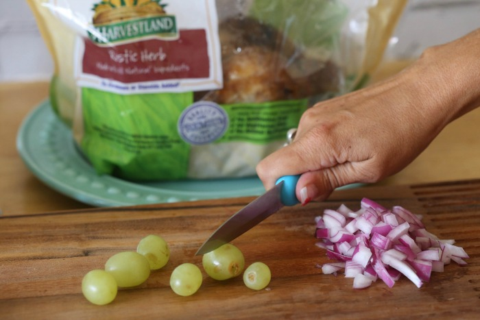 chicken salad onion grape (1 of 1)